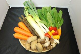 旬の庄内野菜5種&加工品10種詰合せ【送料無料】