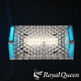 【送料無料】トンガリ ナンバーフレーム プラ板付き ウロコ柄 大型車用 ※LEDユニット付き