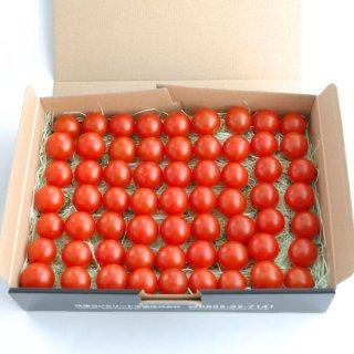 スパルタ生まれの笑ちゃんトマト【1kg バラ入】
