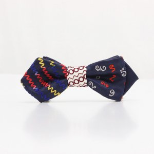【kids】 刺繍の蝶ネクタイ マジカルラッシュ 藍 AGEHA tie