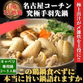 名古屋コーチン鶏鍋セット  日本3大地鶏 究極の手羽先鶏鍋 2〜3人前