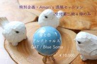 特別企画・遠隔セッション by Amari 『アルクトゥルス・青と白』