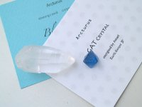 エナジャイズ「青と白」セット・アルクトゥルスGAT&ブルーソーマ(2)