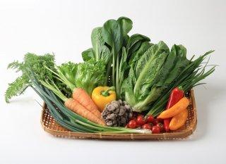 旬の野菜BOX XSサイズ