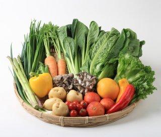 旬の野菜BOX Mサイズ