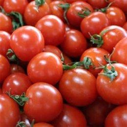 有機ミニトマト 150g
