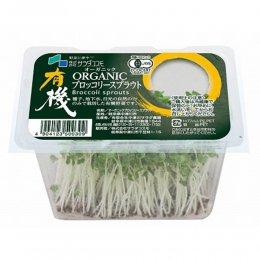 有機ブロッコリーの新芽 20g