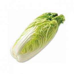 有機ミニ白菜 1個