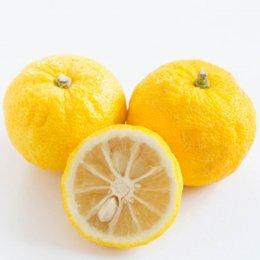 有機柚子 2個