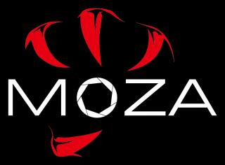 MOZA アクセサリー各種(ケーブル・プレート他)