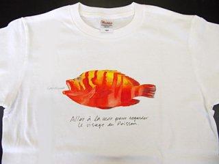 Tシャツ(アカミーバイ).abc