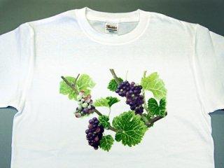 Tシャツ(三房のピノ).abc