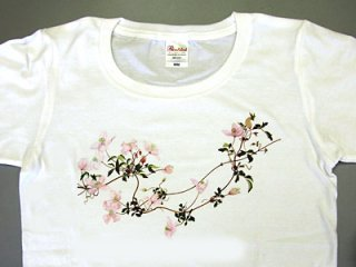 Tシャツ (モンタナ/女性用).abc