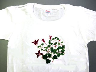 Tシャツ (赤い花のクレマチス/女性用).abc