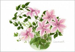 ポストカード「ガラス花瓶のクレマチス」.abc