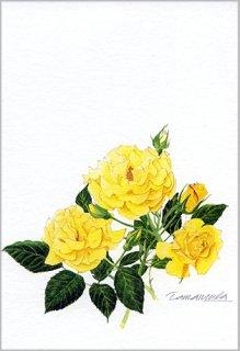 ポストカード「黄色いバラ」.abc