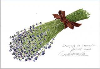 ポストカード「ラベンダーの花束2006」.abc