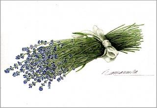 ポストカード「ラベンダーの花束」.abc