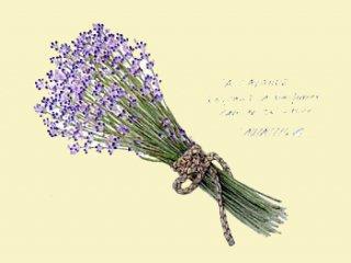 版画 「ラベンダーの花束 �」.abc
