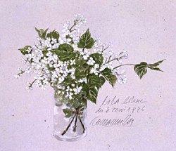 版画 「白いライラックの花」.abc