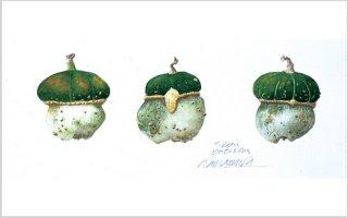 版画 「緑帽子のポチロン」.abc