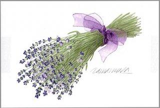 ポストカード「ラベンダーの花束 (紫のリボン)」.abc
