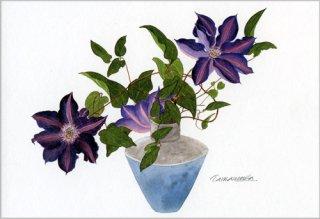 ポストカード「ギリシャ花瓶とクレマチス」.abc