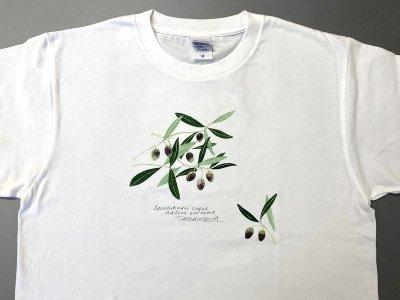 Tシャツ(オリーブ).abc
