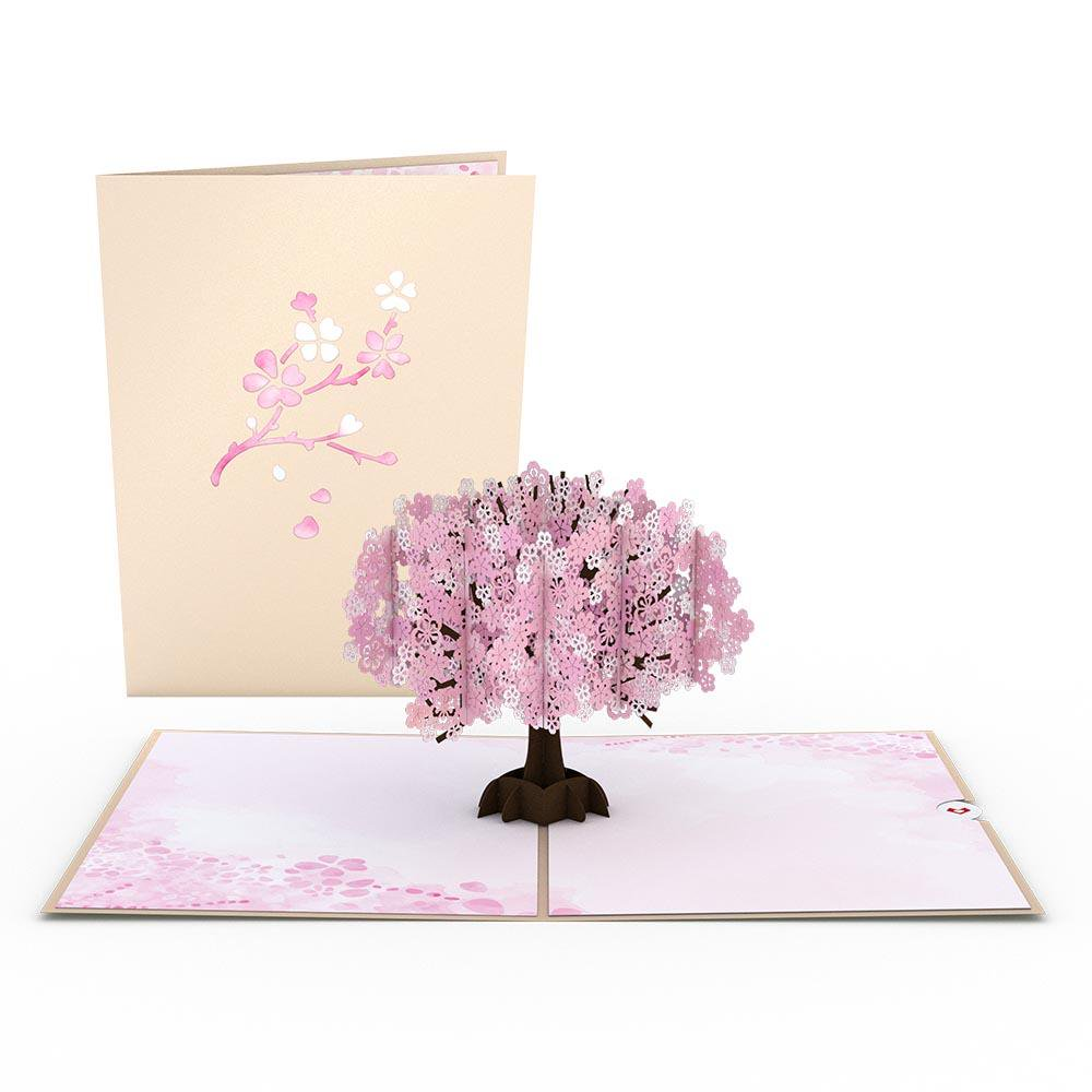 Cherry Blossom 3D card<br>さくら