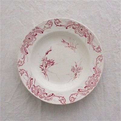 CENTAUREE 赤いヤグルマギクの深皿24cm_A/Creil et Montereau