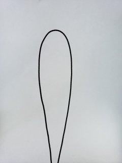 スレンダーコード(ストラップコード)ブラック巾約0.7�×30m巻