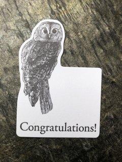 Congratulations カード