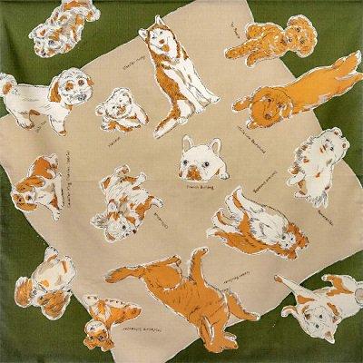 MISATO ASAYAMA DOGS