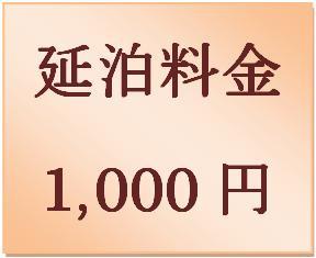 延泊料金 1,000円