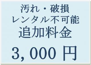 汚れ・破損 レンタル不可能 追加料金 3,000円