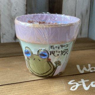 カエル鉢 2.5寸 3   現物商品