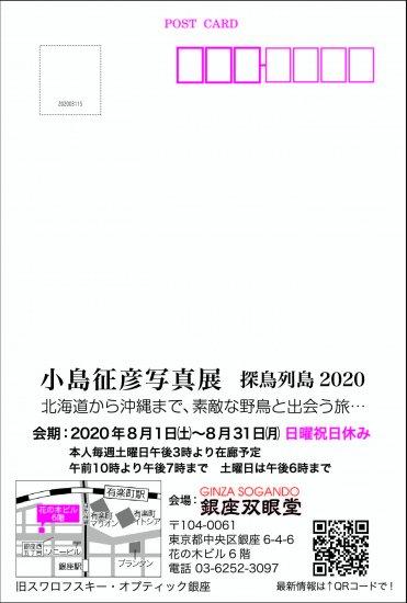 小島征彦 写真展「探鳥列島2020」 開催のお知らせ【画像2】