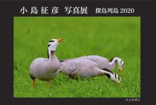 読み物 小島征彦 写真展「探鳥列島2020」 開催のお知らせ