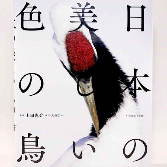 日本の美しい色の鳥  上田恵介/監修 大橋弘一/解説