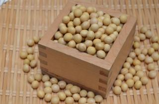 【宅急便】新豆令和2年産<br>北海道産 鶴の子大豆(大粒)