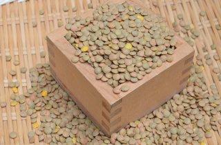 アメリカ産茶レンズ豆<br>(皮あり)