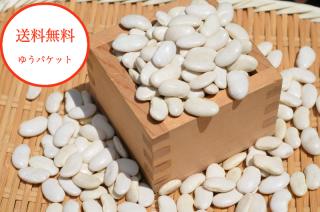 【ゆうパケット送料無料】<br>令和2年産【新豆】北海道産大福豆<br>白いんげん豆