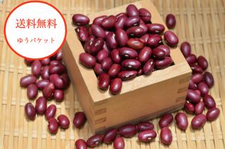 【ゆうパケット送料無料】<br>令和2年産 北海道産 大正金時豆 【新豆】