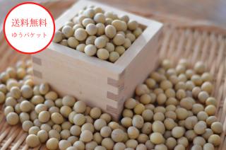 【ゆうパケット送料無料】<br>北海道産たまふくら大豆<br>令和2年産・新豆 甘いとっても美味しい大豆