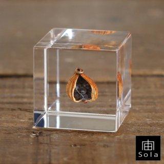 宙-sola- Sola cube ゲットウ