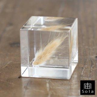 宙-sola- Sola cube ウサギノオ