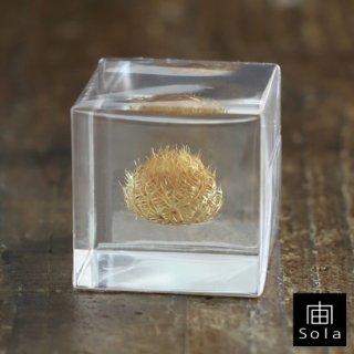 宙-sola- Sola cube ケンタウレア