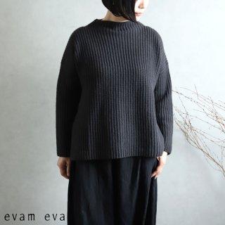 evam eva(エヴァム エヴァ) 【2020aw新作】ソフトウールハイネックプルオーバー/soft wool high necked pullover stone gray(86)E203K192