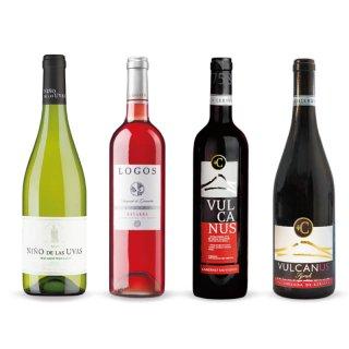 人気のスペインワイン【4種類】12本セット