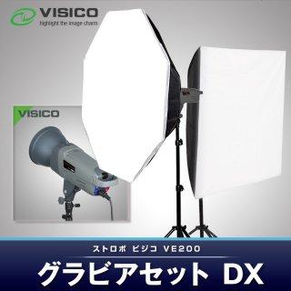 VISICO ビジコ ストロボ ライト VE200W グラビアセットDX リモコン付き (23895)